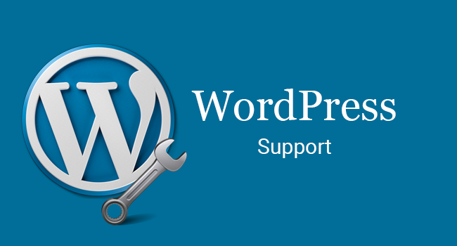 Premium WordPress support