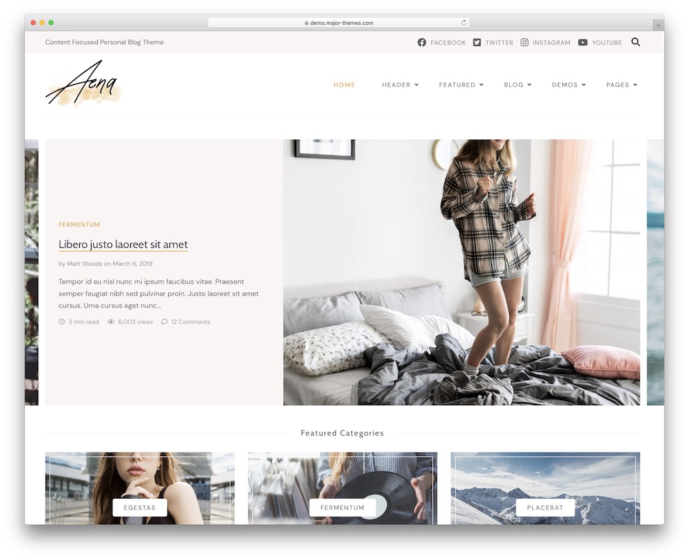 aena wordpress theme for authors