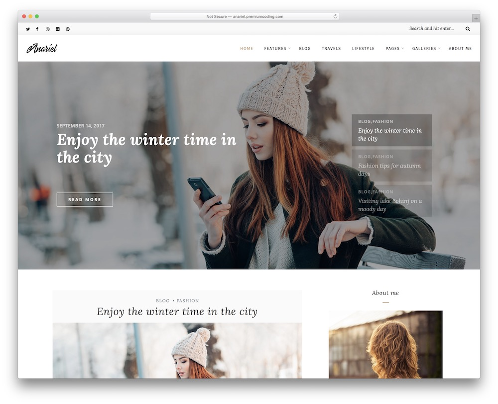 anariel lifestyle wordpress theme