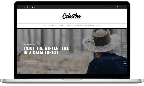 Celestine – A Modern WordPress Blog
